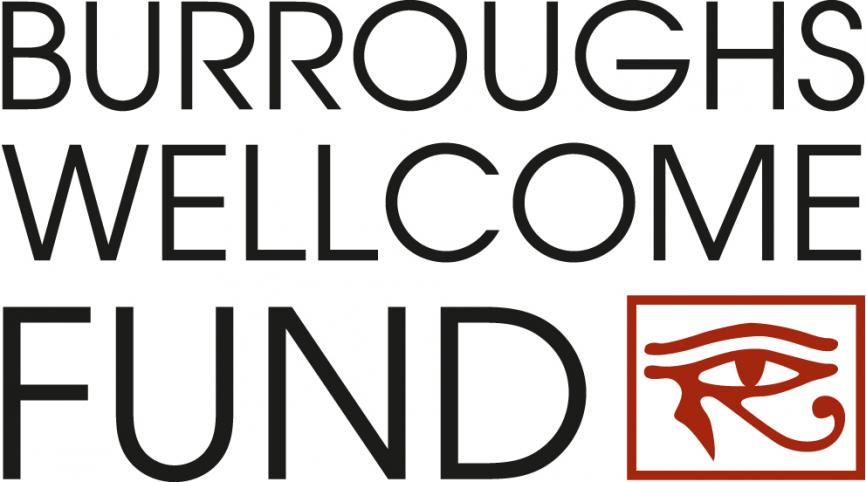Burroughs Wellcome Funds